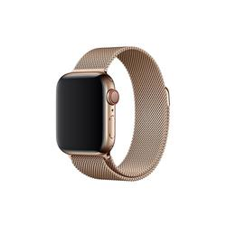 Apple 40mm Band: Gold Milanese Loop