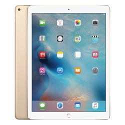 Apple 12.9-inch iPad Pro Cellular 256GB