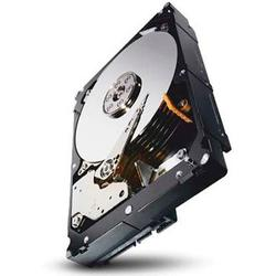 Seagate HDD Server CONSTELLATION  - 2 TB